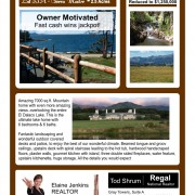 Regal Realty Flyer