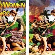 Wildwomen Phases