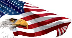 US Veterans News website brand